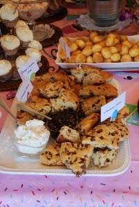 Dianes Dessert Party 027