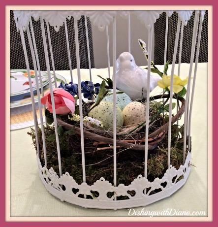 2015-03-15 11.18.24 -CLOSE UP WHITE BIRD AND NEST