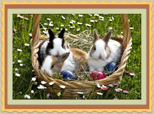 960x540- easter close for blog - bunnies