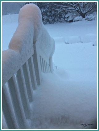 2016-01-23 16.48.41 SNOW 3