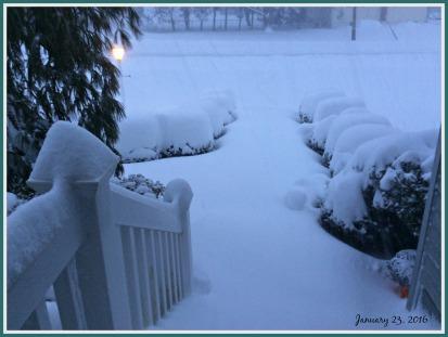 2016-01-23 16.50.15- SNOW 4