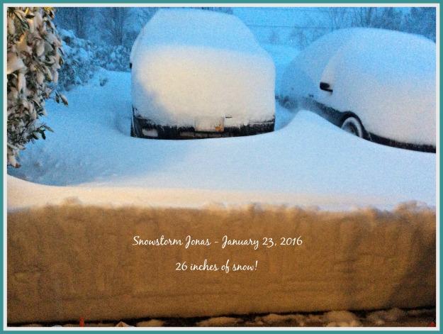 2016-01-23 17.12.53- SNOWSTORM JONAS - USE THIS WHITE LETTERING.jpg