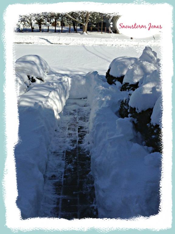 2016-01-24 13.27.55 - SNOWSTORM JONAS