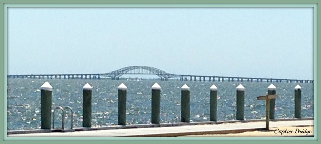 2016-06-19 13.50.33 CAPTREE BRIDGE