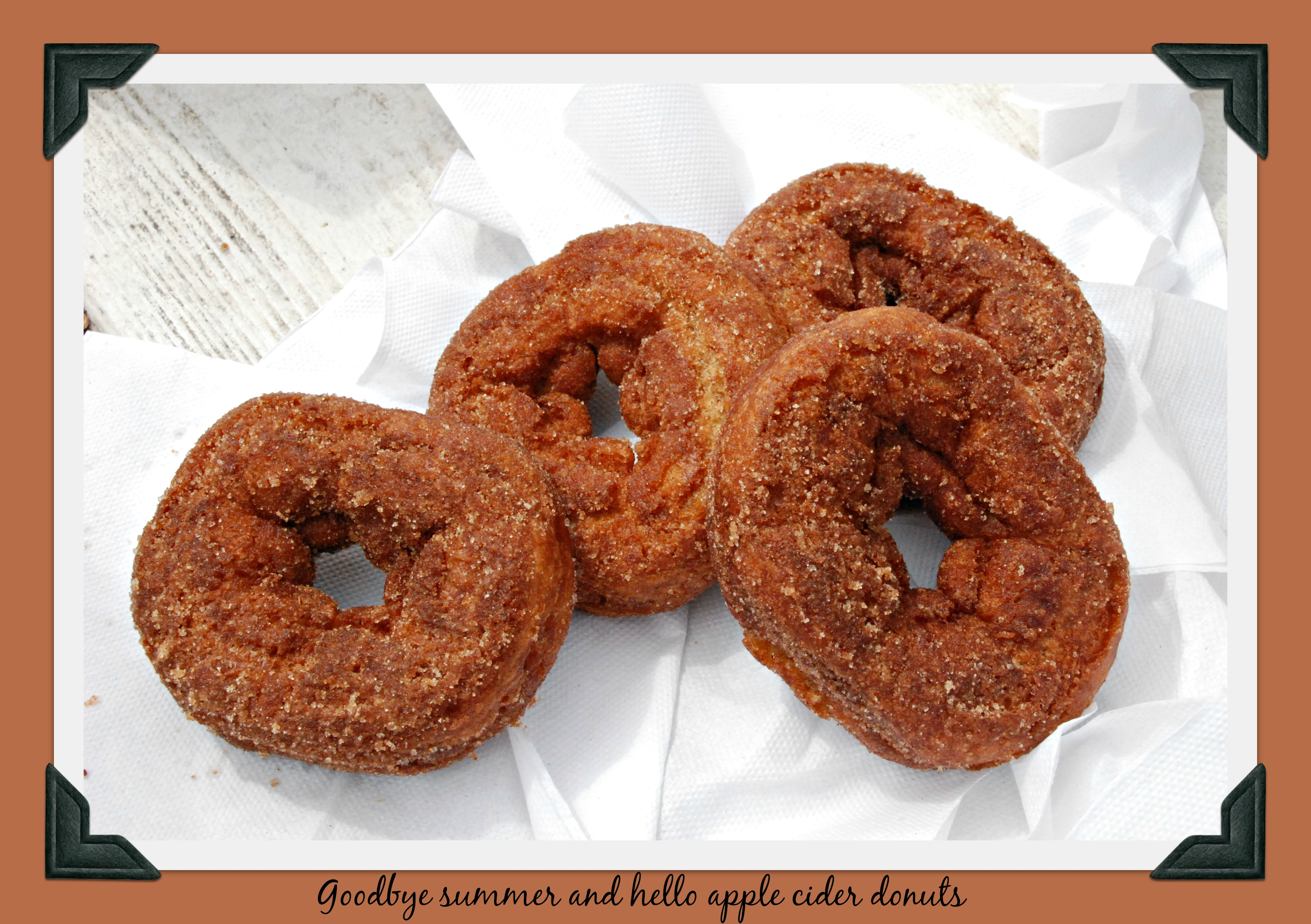 dsc_0667-apple-cider-donuts