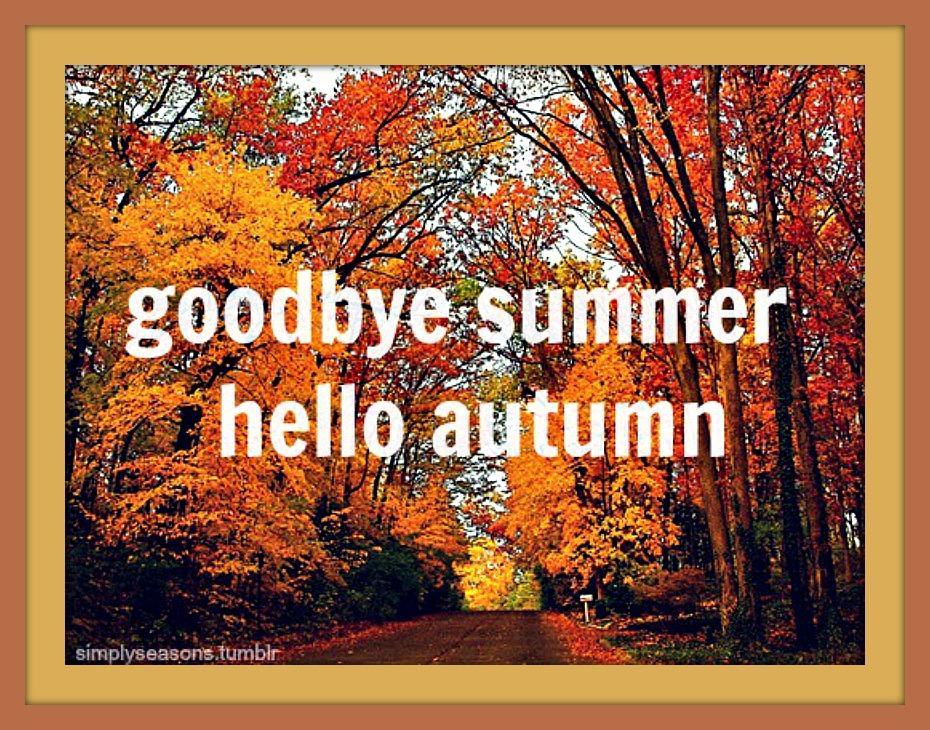tumblr_m9q4s31kpa1r3sm6co1_500-hello-autumn-for-blog